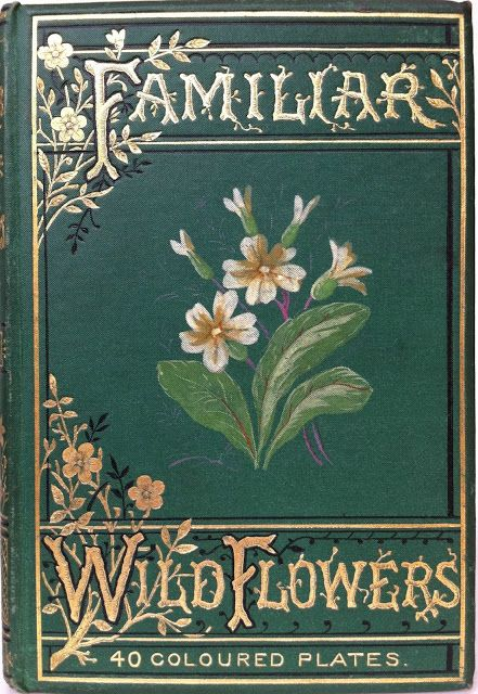 Beautiful Gardening Books: 1000+ Images About Vintage Garden And Flower Books On
