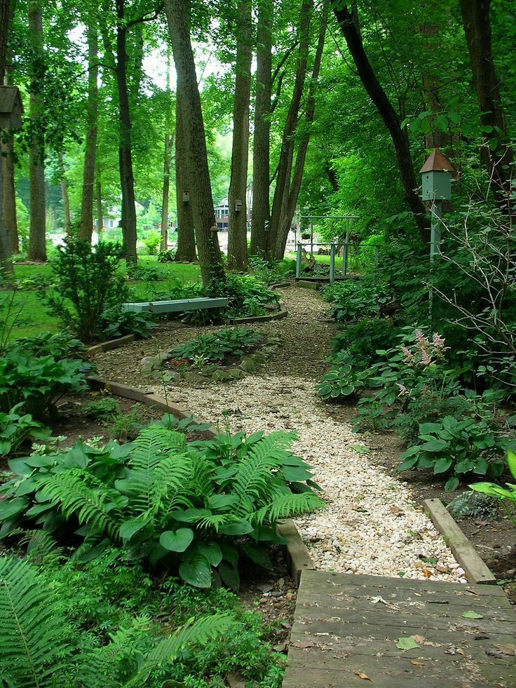 25 Unique Woodland Garden Ideas On Pinterest Forest 400 x 300