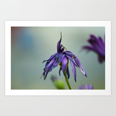 violet color Art Print by Oscar Tello Muñoz - $19.00