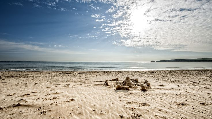Studland Bay | National Trust