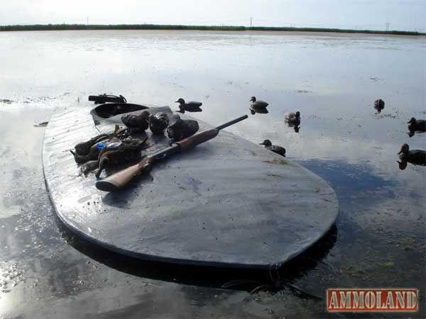 Minnesota's New Open Water Duck Hunt