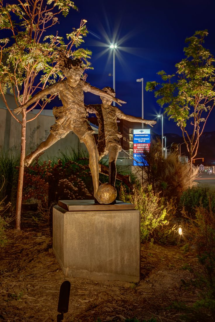 Commercial Landscape Lighting Ideas And Pictures