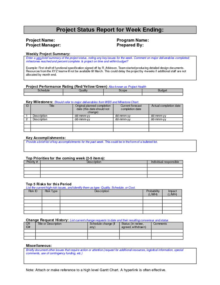 Weekly Project Status Report Template | Report Templates