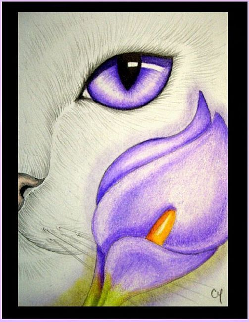 Cat Art | White Cat - Calla Lily Flowers - by Cyra R. Cancel from Gallery