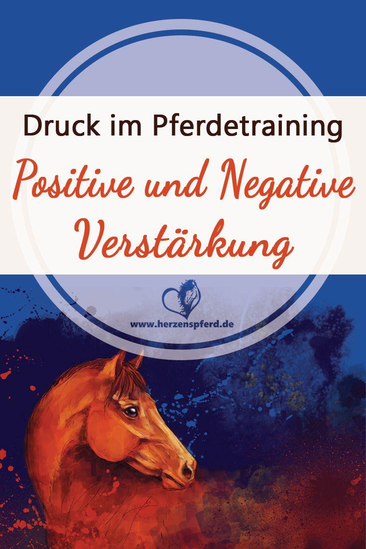 Druck im Pferdetraining – Positive und Negative Verstärkung – meine Gedanken!