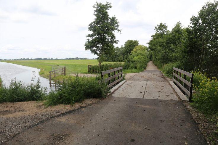 Losloopgebied Veenkade in Kockengen, ga heerlijk wandelen in losloopgebieden met uw hond!