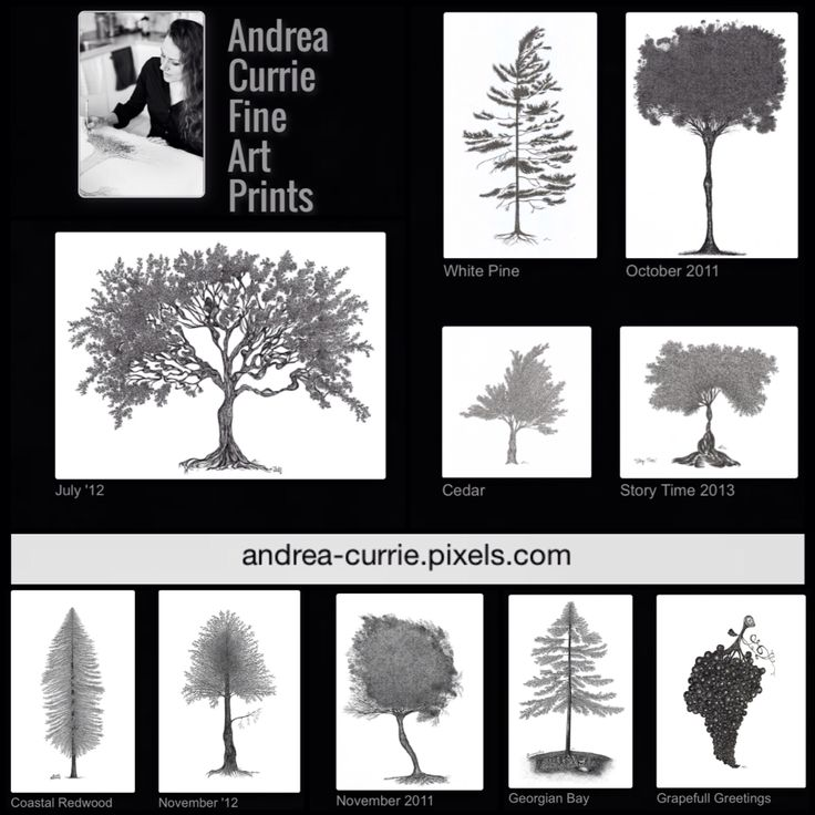 New tree art products! Check out my affiliate Fine Art America and the new products they are showcasing. Pillow cases, shower curtains, tote bags, phone cases and many more! I have over 50 tree images to choose from. Follow the link and start shopping. Ordering made simple, easy and fun :)  http://andrea-currie.pixels.com