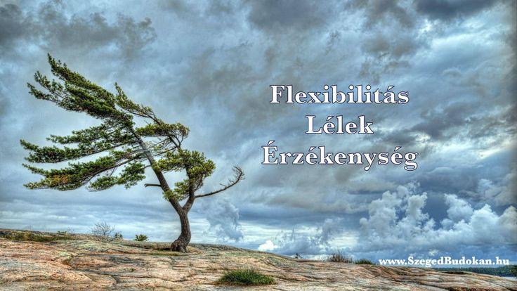 Megérkezett a tavasz és megérkeztek az új alapelvek, amiket áprilisban gyakorlunk majd. Flexibilitás, Lélek, Érzékenység. ******  www.SzegedBudokan.hu