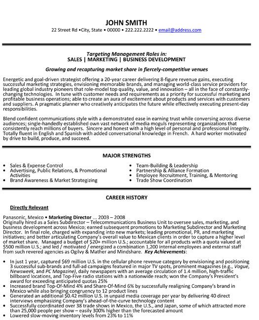 52 best Information Technology (IT) Resume Templates \ Samples - marketing director resume sample