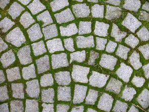 Idée terrasse sous la pergola : Pavés gazon