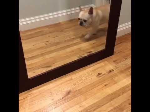Scared Doc so funny https://youtu.be/hurbB7nO7E4