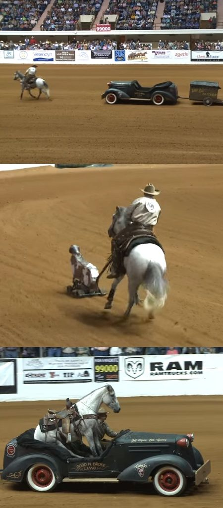 Mustang VS. Quarter Horse – What Would You Rather See? (VIDEO) #horse #mustang #horses #pets