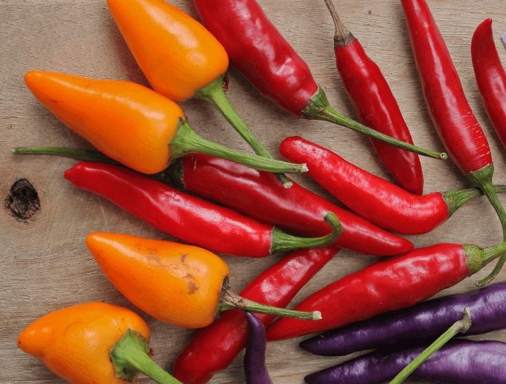 Feeling the love with chillies