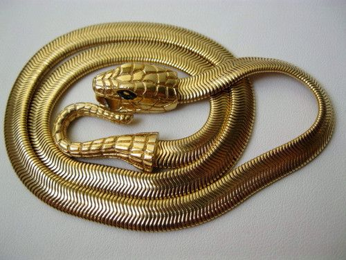 63 best snakes images on Pinterest Snake Snakes and Snake jewelry