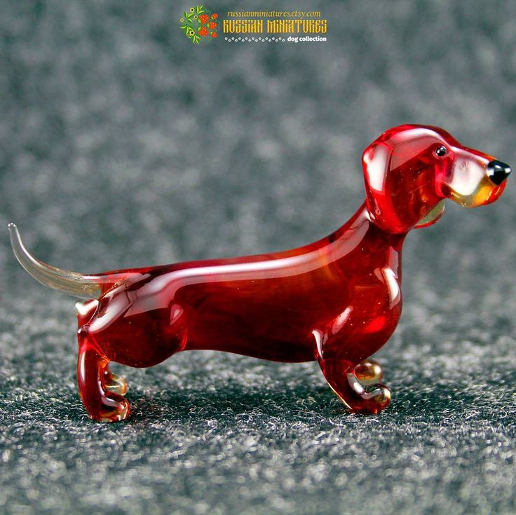 Color Glass #Dachshund Figurine  Check out here: https://goo.gl/lRByb6 Dogs collection: https://goo.gl/RByga4  #russianminiatures #campingwithdogs #savethefishies #sandcloud #seniordogsrule #wegotyou #whywerescue #tot #tongueouttuesday #dogsoffreedom #workingdog #traversecity #puremichigan #shelterdog #mansbestfriend #herodog #neverstopexploring #campvibes #instadaily #staywild #photography #wilderness #getoutstayout #outdoorlife #theoutbound #getoutside