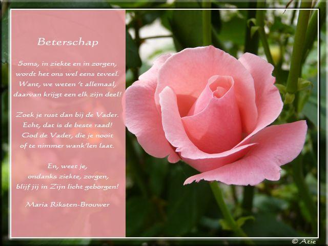 Bekend Christelijk Verjaardagsgedicht Brm 28 Wofosogo