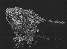 incomplete_iguana.jpg (273×200)