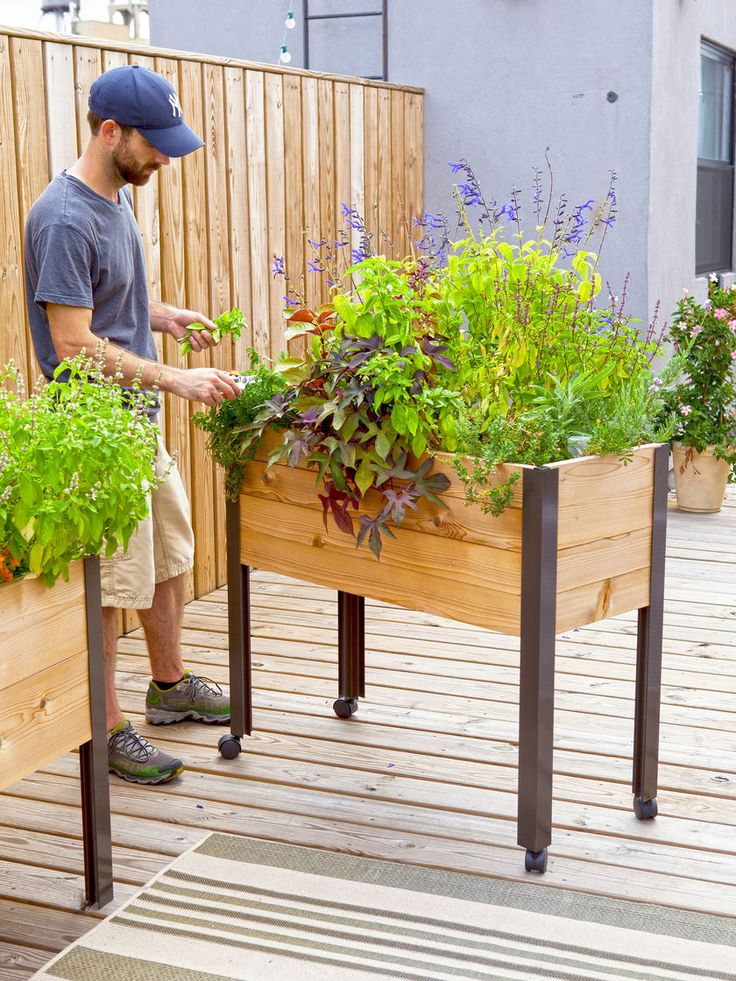 1000 Ideas About Elevated Planter Box On Pinterest Planter Boxes Elevated Garden Beds And