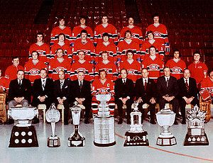 1977 Montreal Canadiens ice hockey team