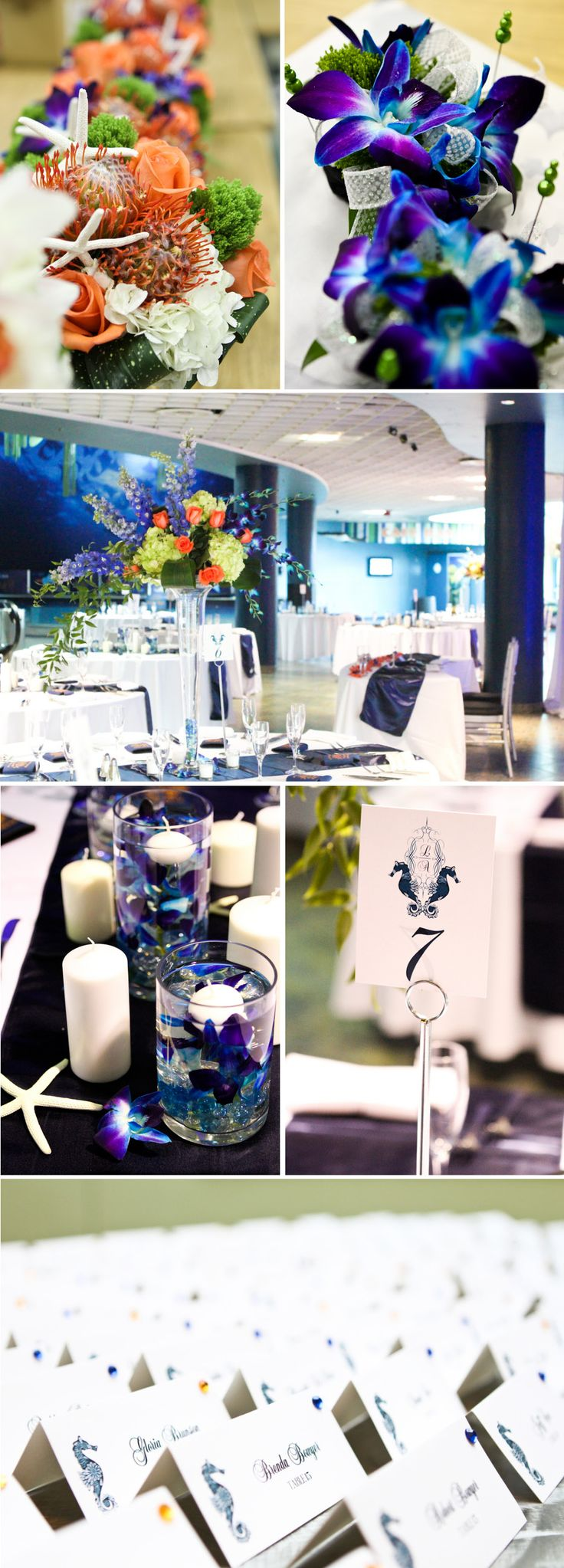 Tampa Wedding at Florida Aquarium by Horn Photography and Design - The Celebration Society