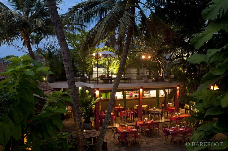 A delightful outdoor garden cafe attached to the Barefoot Galle Road store
