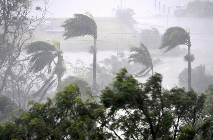 Strong wind and rain from Cyclone Debbie is seen affecting trees at Airlie Beach. AAP/Dan Peled/via REUTERS