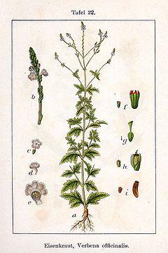Rohtorautayrtti – Wikipedia