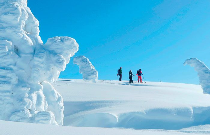 THE PEAK MAGAZINE (Singapore) Insider's Guide to The Perfect Ski Holiday in Wintry Niseko, Hokkaido | The Peak Singapore - Your Guide to The Finer Things in Life | zaborin.com