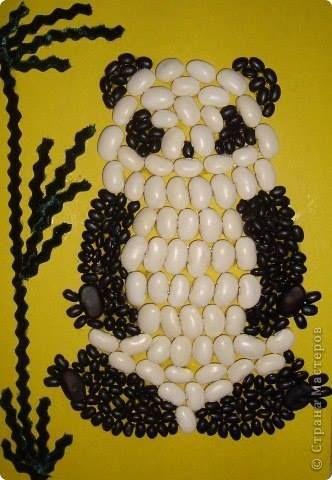 panda - fazole,( bílé, černé)