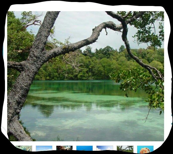Kakaban island..kepulauan derawan