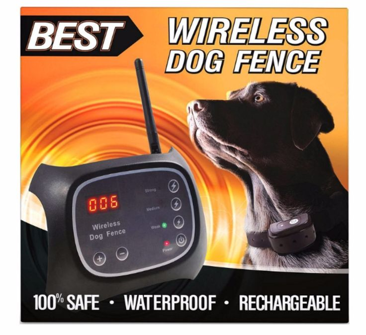1000 Ideas About Dog Fence On Pinterest Fence Prices