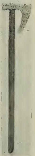 N%C3%A9vtelen2.jpg (148×650)