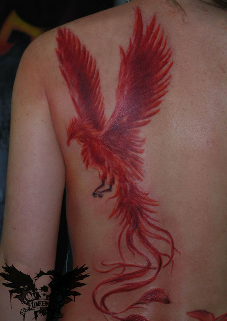 Love this Phoenix tattoo.. Rising up through the ashes, always born again and made stronger from tragedy.