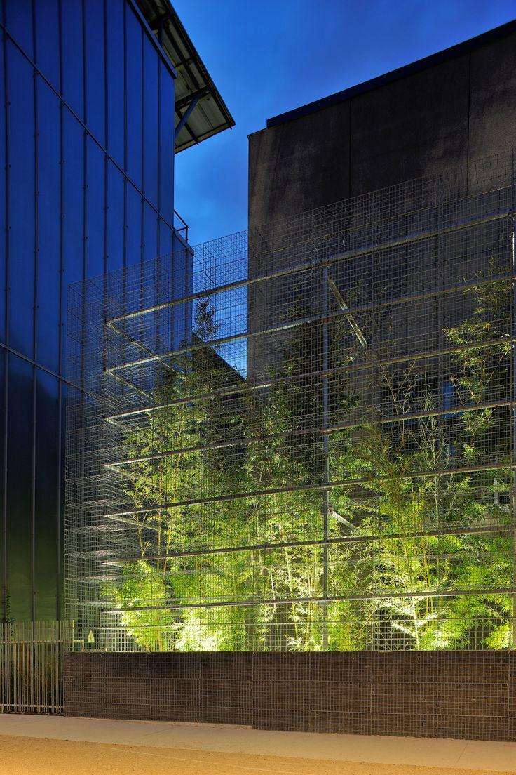 Rue royale architectes studio erick saillet the for Extension architecte