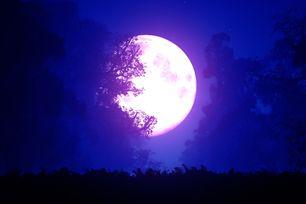 Jak nás ovlivňují fáze Měsíce? Více, než si myslíte! Využijte jich ve svůj prospěch...