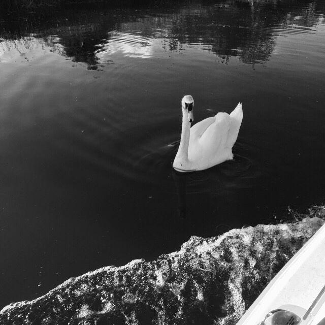 Black n white boating days !