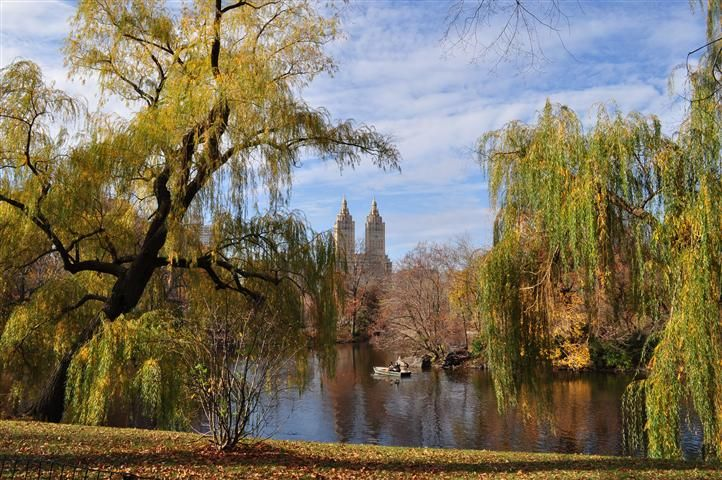 Autumn in Central Park, NY