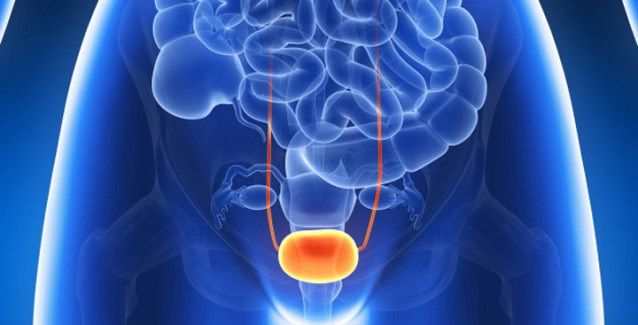 Ako účinne liečiť zápaly močových ciest bez použitia antibiotík
