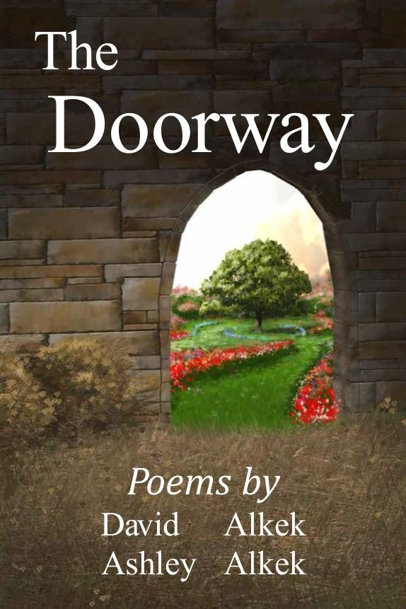 Best General Poetry Book  http://books.txauthors.com/product-p/doorw.htm