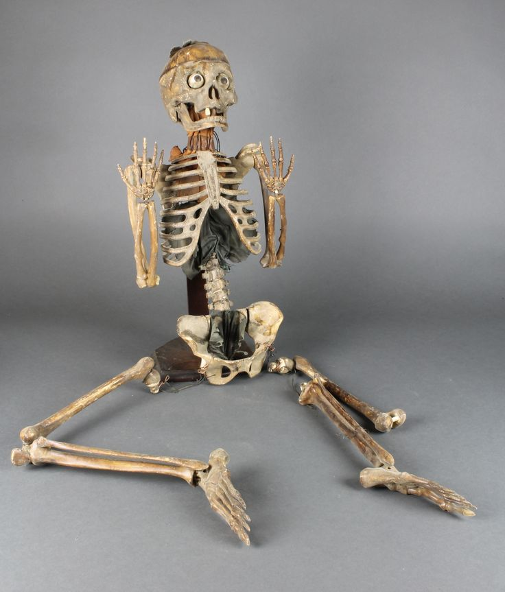 """Lot 312, An early 20th Century medical student's  plastic skeleton 45"""" in length, est  £250-350"""
