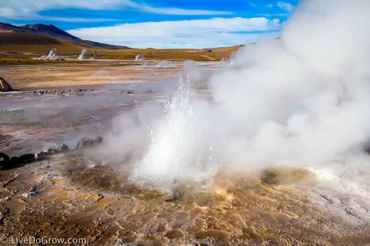 Visit El Tatio Geysers San Pedro de Atacama Chile | LiveDoGrow