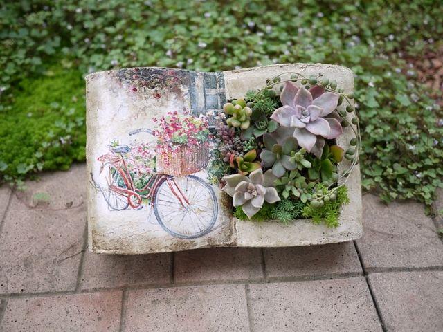 多肉植物&セダム寄せ植え ~ ミニブックプランター(赤い自転車)