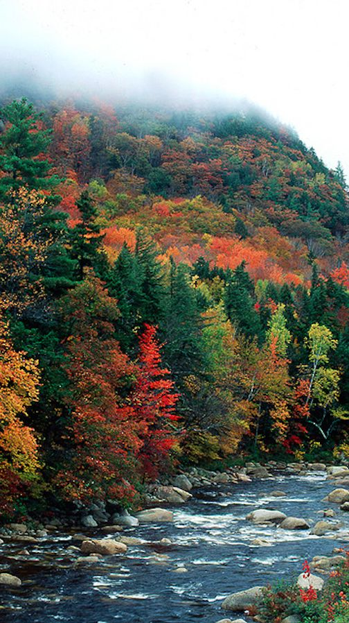 Mad River in the White Mountains of New Hampshire, a tributary of the Pemigewasset River. The White Mountains are crossed by the Appalachian Trail - might get round to that one day!