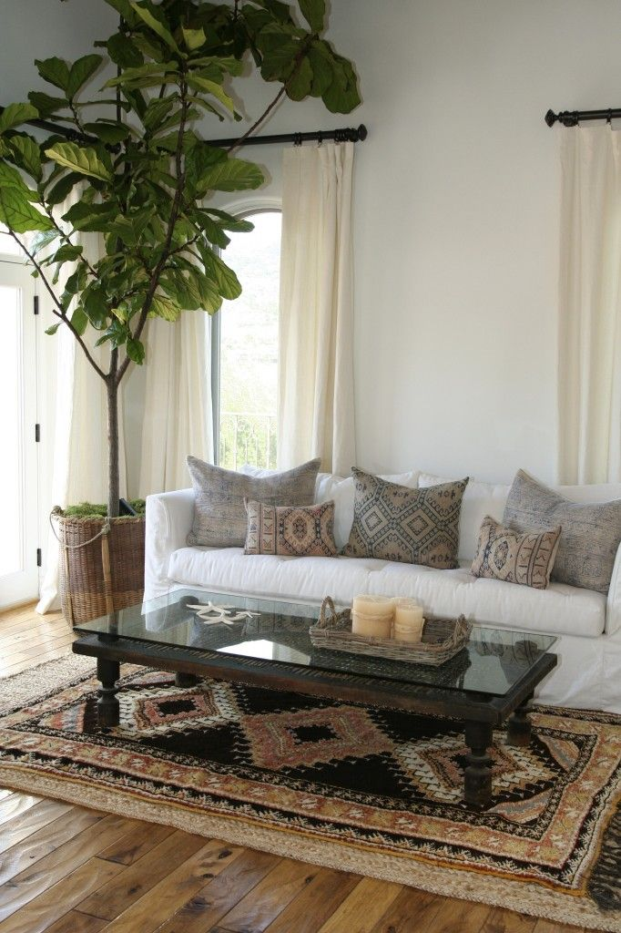 neutral pattern rug + pillows with white sofa + giant fig leaf tree
