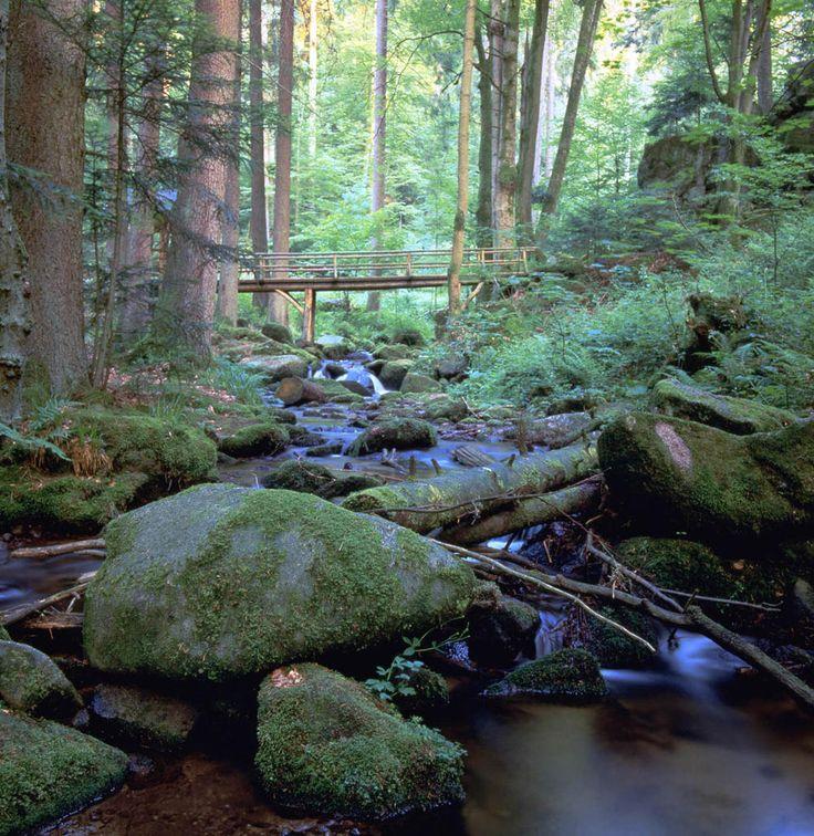 Wildromantische Natur bei Bad Herrenalb