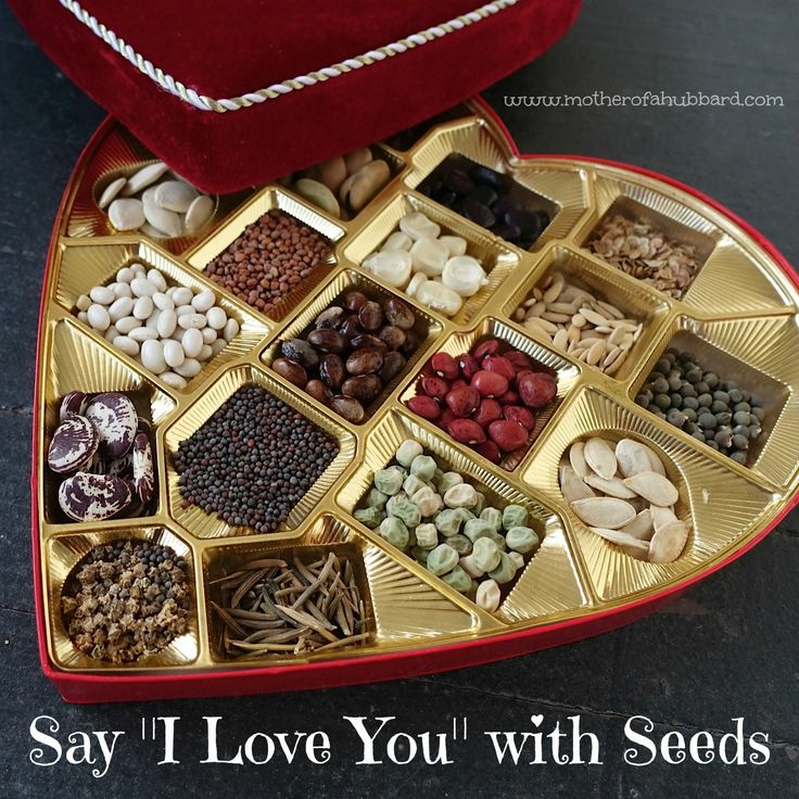 A fun way to repurpose a candy box! For any heart-rich occasion, give the gift of seeds bearing the promise of beautiful flowers and vegetables.