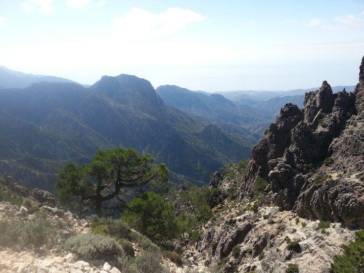 View of sea from Pico del Lucero