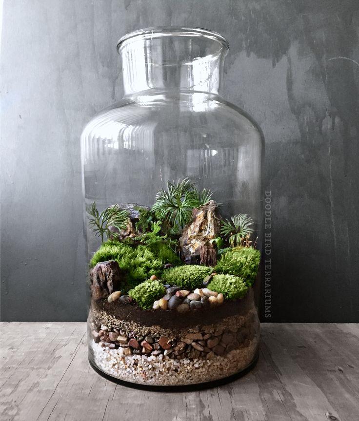 Best 20 Large Terrarium Ideas On Pinterest Water