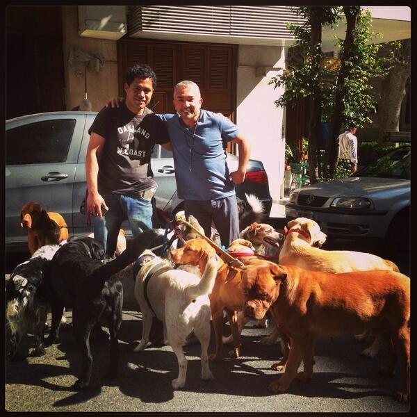 @Cesar Millan: With an Argentinian dog walker! #LiderdelaManada