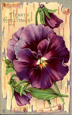 Abundante saludos violetas DPO Jackson cumbre desplazamiento De Fondo Postal de Pennsylvania | Objetos de colección, Postales, Saludos | eBay!